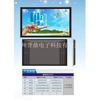Wall Mounted Ad Display