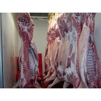 FROZEN PORK FEET, Pork Ribs, Pork Ears, Pork Tail, Pork Legs, Pork Meat