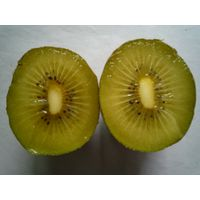 Chinese golden kiwi