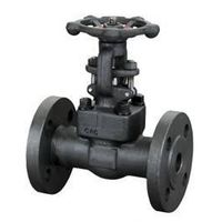 CLASS 150~600 FLANGED END FORGED GATE VALVE thumbnail image