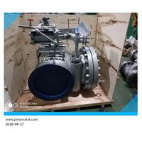 swing check valve with counter weight and level in BW end