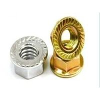 DIN 6923 Hexagon Nuts With Flange thumbnail image