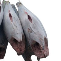 IQF yellowfin Frozen Tuna Fish thumbnail image
