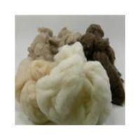 cashmere fiber thumbnail image