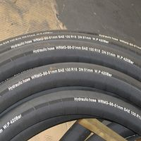 Low temperature resistant flexible hydraulic rubber hose for Russia market
