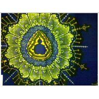 batik print fabric real wax print fabric
