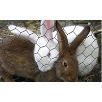 chicken wire mesh thumbnail image
