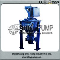 Heavy Duty Pulp Paper Vertical Water Treatment Centrifugal Froth Pump