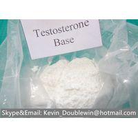 Testosterone thumbnail image