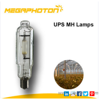 Reliable and good quality 600W/1000W single ended metal halide lamp