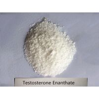 cheap anabol steroids// Anabol //anabolic steroids powder Test e powder factory price