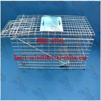 hot sell foldable galvanized live animal trap cage