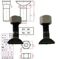 Rail bolt/T-bolt/Clip bolt/Clamp bolt