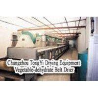 DWT Vegetable-dehydrate Belt Dryer
