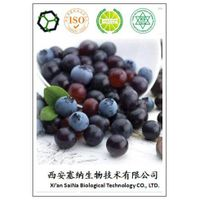Super Antioxidant 100% natural plant extract Acai berry extract /Acai Extract 10:1/Acai juice powder