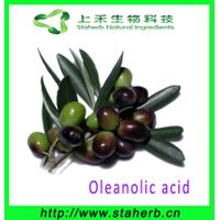 100% natural HPLC 98% Pure natural Oleanolic acid extract