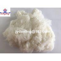 Polyester Staple Fiber (PSF) for Spinning thumbnail image