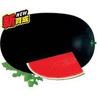 W18 Haole mid-mature oval shape black hybrid watermelon seeds f1 thumbnail image