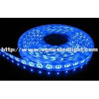led tape 5M 300 leds 3528 LED strip Cold White Light Waterproof IP68 12V DC Underwater