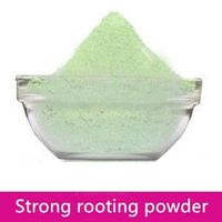 Efficient promote rooting plant growth regulator Strong rooting powder 98%