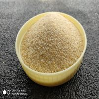 China top quality dehydrated garlic spice granules for sale