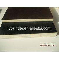 laminated  veneer plywood / marine plywood for concrete thumbnail image