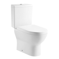 Bathroom Floor Mounted S-trap 250mm/P-trap 180mm Roughing-in Washdown Two-piece Toilet