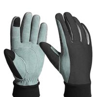 Touch Screen Competible Winter Glove (011) thumbnail image