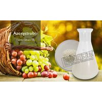 Fungicide Azoxystrobin 98tc 250g/l Sc thumbnail image