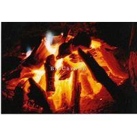 Oak CHARCOAL for BBQ thumbnail image