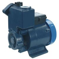 Self-priming Vortex Pump(DGP125)