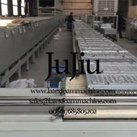 Latex Pillow Production Line