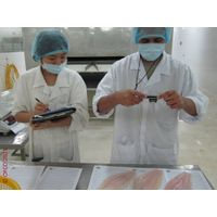 Pangasius, Basa, Swai Inspection Control Quality Specialist