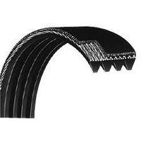 Ribbed V-Belts / Poly V-Belts / Serpentine Belts thumbnail image