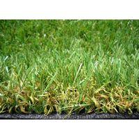 BI-Color Golf Putting green artificial turf thumbnail image