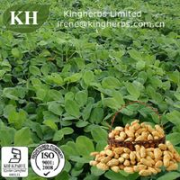 98% Luteolin by HPLC;Peanut shell extract