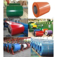 Pre-painted Steel Sheets coil