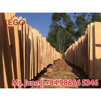 Factory direct Sale Acacia core veneer vietnam veneer price