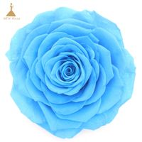 Real Touch Everlasting Rose Flower for Wedding Decoration for Gift