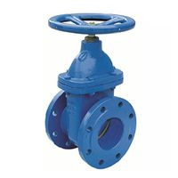 Cast Iron Metal Seated Water Gate Valve