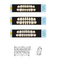 acrylic teeth