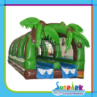 Tropical Dual Water Inflatable Slip and Slide for Sale