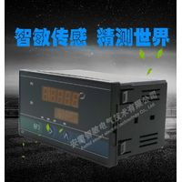 Weighing display instrument