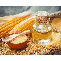 Top Grade Corn Oil in Bulk thumbnail image