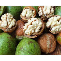 Chinese new crop dry In-shell walnuts 30-36mm origin supplier thumbnail image