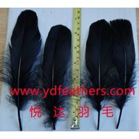 goose Feather for Decoration