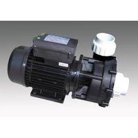 LX LP300/LP200 Whirlpool Bath Pump