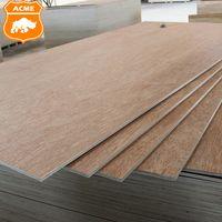 WBP Glue Okoume Bingtangor Surface Plywood with Poplar Core