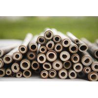 The Reasons to Use Bamboo Straws thumbnail image