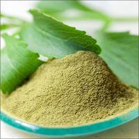Stevia Green Leaf Powder